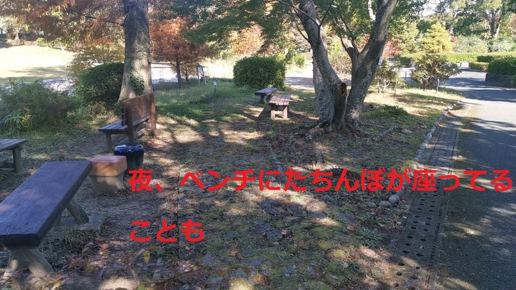 飯田公園のベンチ