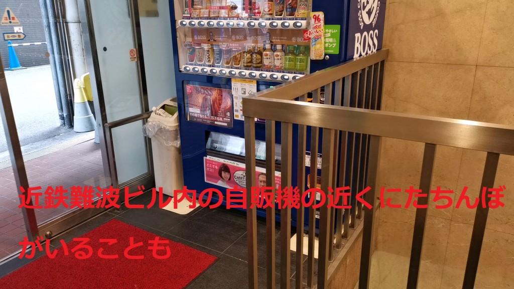 たちんぼが出没する近鉄難波ビル内の自動販売機