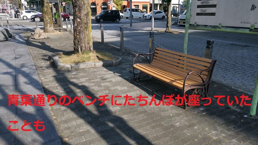 たちんぼがよく出没した青葉通りのベンチ