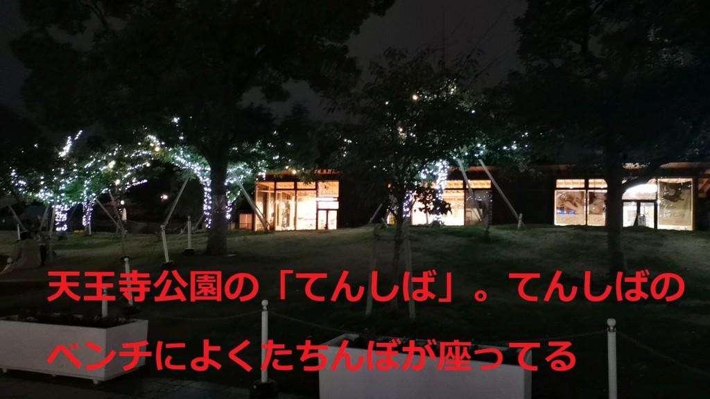 天王寺公園のてんしば