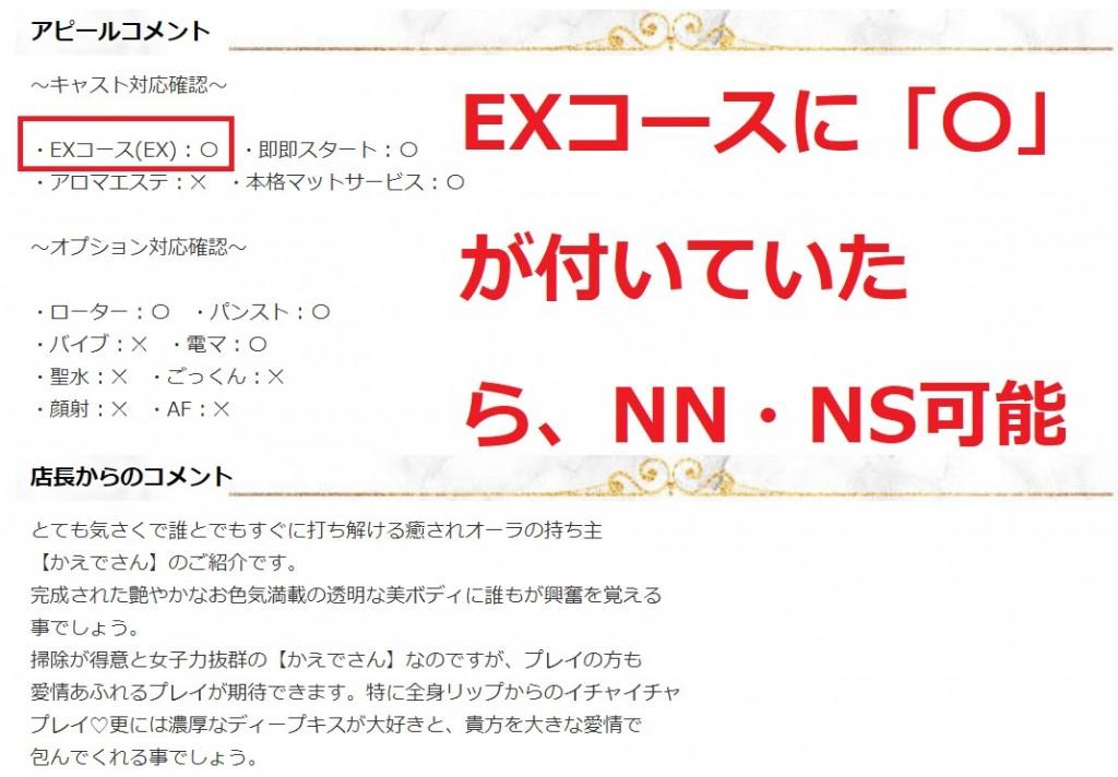 「EXコース」に「〇」が付いていたら、NN・NSでのプレイが可能