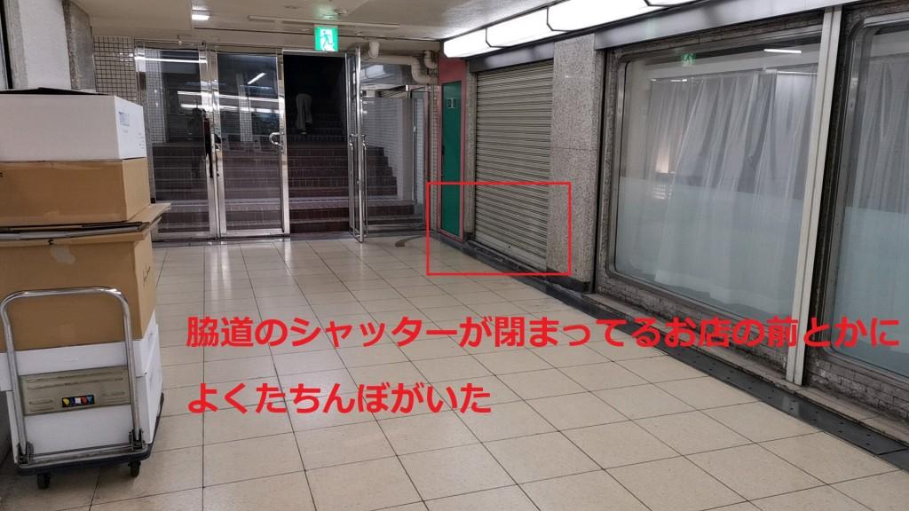 メトロ神戸の脇道