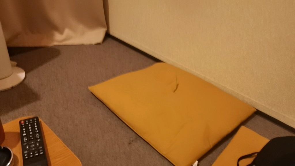 個室内に置かれてる座布団